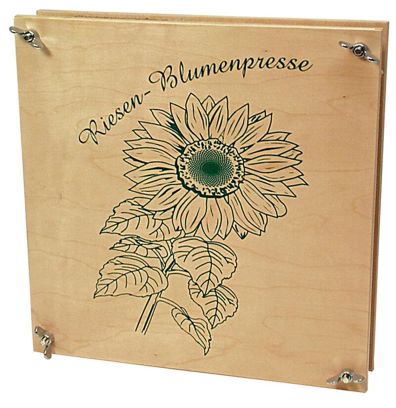 BlauMENPRESSE XXL Blütenpresse Blattpresse Blätter für für für Herbarium extra groß NEU b4e15c