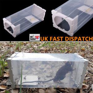 Pest Stop Systems Trip Trap Humane Live Catch Mouse Traps