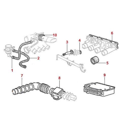 Eagle Lyda//EGL Mad Max 300//300ccm cadenas castillo refuerza especiales