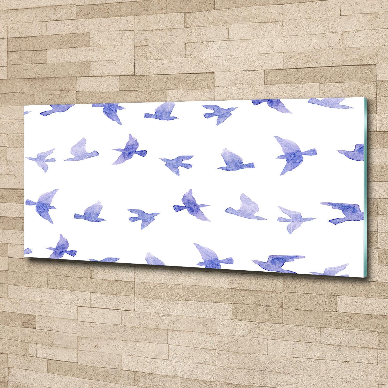 Wandbild aus Plexiglas® Druck auf Acryl 125x50 Tiere Schwalben