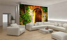 Old Entrance Door Wall Mural Photo Wallpaper GIANT DECOR Paper Poster Free Paste