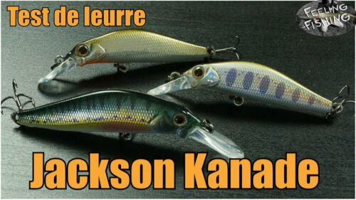 Japan Wobbler Jackson KANADE 60 Forelle Köder Raubfische Angeln Barsch
