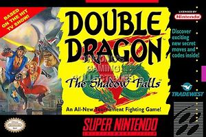 Rgc Huge Poster Double Dragon V Super Nintendo Snes Box Art Ddn005 Ebay