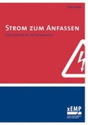 Strom zum Anfassen von Sven Kubin (2010, Taschenbuch) | eBay