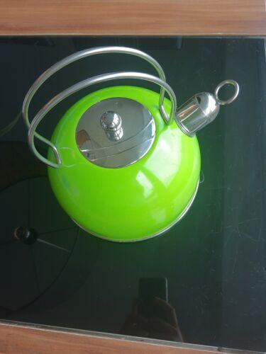 Wasserkessel Edelstahl Grün Schick