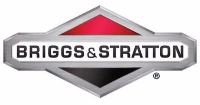 STD Ring Set 696403  Briggs & Stratton OEM