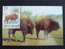 ROMANIA MK BISON WISENT MAXIMUMKARTE CARTE MAXIMUM CARD MC CM c1019