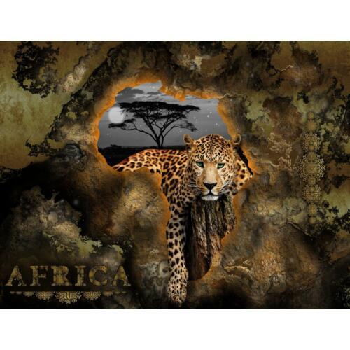 Fototapete Afrika Tapete Wandbilder XXL Vlies Wandtapete 9447aP