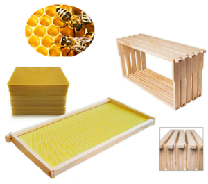 Details about Beekeeping 10 Pack Bees Wax Foundation & 10 Alliance Pine  Beehive Frames