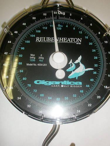 Korda Gigantica Reuben heaton fishing  scales 120lb  4oz  famous brand