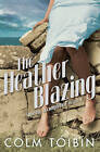 The Heather Blazing by Colm Toibin (Paperback, 1993)