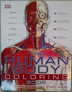 DK The Human Body Coloring Book NEW; Anatomy for High School ...