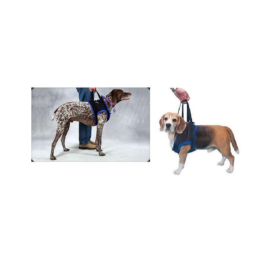 Vorne Stütze Kabelbaum für Hunde - S - XL - Operation Paralysis oder Accidents