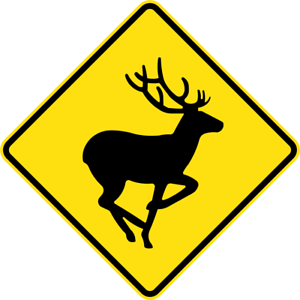 DEER-W5-V134-SELF-ADHESIVE-STICKER-DECAL-SIGN-HEALTH-amp-SAFETY