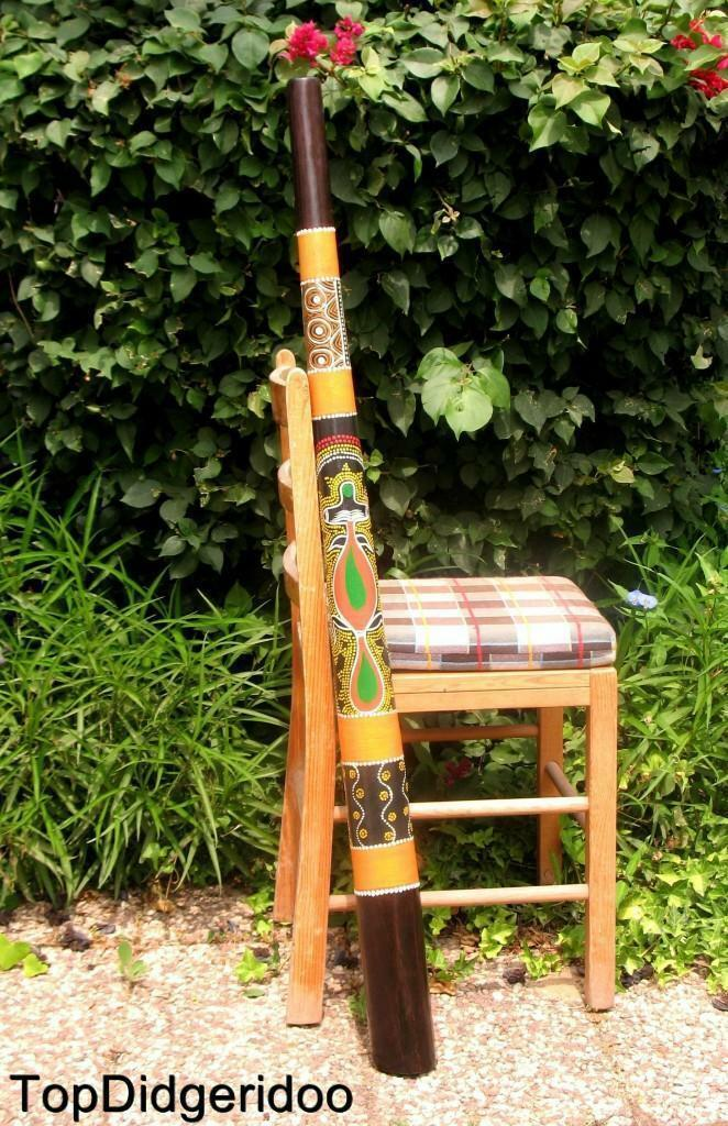 47 \120cm DIDGERIDOO+Bag+Beeswax Mouthpiece  Teak Wood Artwork Dot-Paint LIZARD