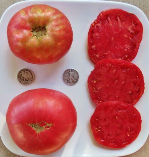 40 graines Rose-Bio Heirloom Tomato Seeds-Très Délicieux Beefsteak