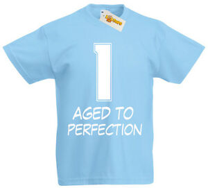 Image Is Loading 1 Aged Perfection T Shirt 1st Birthday Gifts