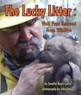 The Lucky Litter: Wolf Pups Rescued from Wildfire by Jennifer Keats Curtis (Hardback, 2015)