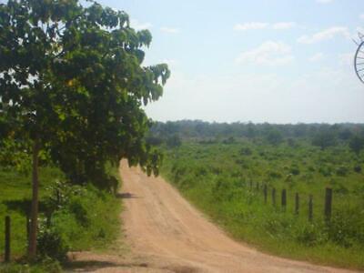 Finca/Rancho en Venta en Venta tipo Ganadero en Balancan Tabasco en 100,000 por Hectarea