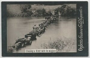 Ogden-039-s-Guinea-Gold-CROSSING-A-RIVER-WITH-OX-WAGGONS-Cigarettes-Card