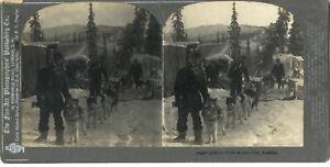Alaska-Am-Stiel-Stereo-Stereoview-Vintage-Analog