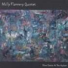 Slow Dance at the Asylum by Molly Flannery (CD, Jul-2004, Molly Flannery Quintet)