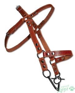 Leather Bridle Halter Driving Equestrian Horse Collar Pony Harness Equitation