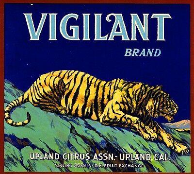 Upland Pinnacle Mountain Peak Orange Citrus Fruit Crate Label Art Print