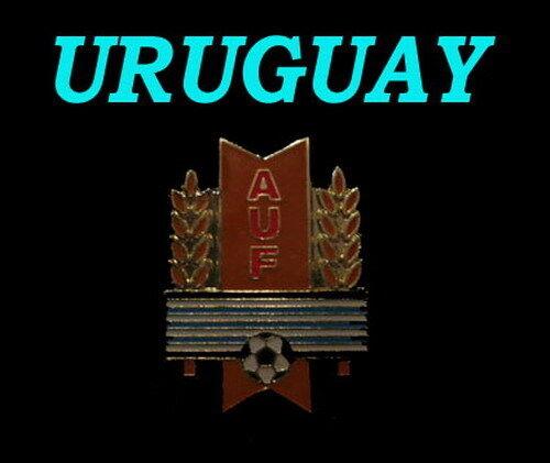 SCHÖNER EMAILIERTER PIN URUGUAY-NEUWARE!!!