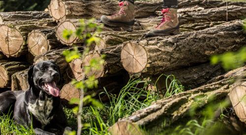 HAIX Nature One GTX Ws Outdoor Damen Stiefel Jagdstiefel Tuch Damenstiefel