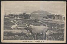 Postcard DEMING New Mexico/NM  Local Town Area Street & Houses view 1920's