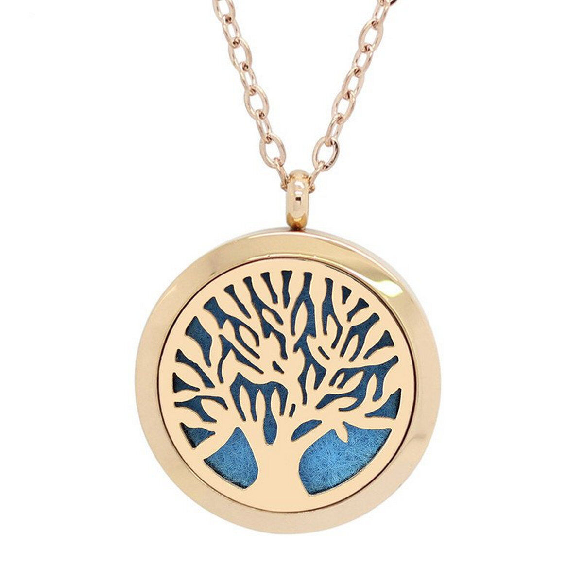 Uk Vincenza Aromatherapy Essential Oil Diffuser Necklace Stainless Steel Locket Ebay