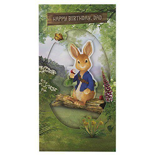 Hallmark Slim Dad Kids Peter Rabbit Pop Up Birthday Card