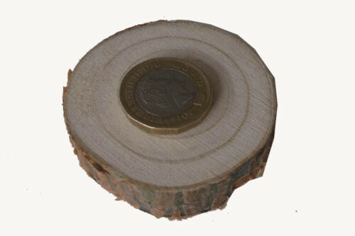 "4-17cm Natural Wooden Wood Log Slices Discs Wedding Decor DIY Crafts 2-6/"""
