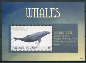 Confiant Îles Marshall 2018 Neuf Sans Charnière Baleines Rorqual à Bosse 1 V S/s Animaux Marins Timbres-afficher Le Titre D'origine