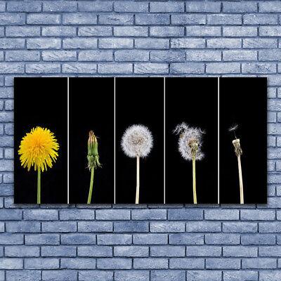 Leinwand-Bilder Wandbild Leinwandbild 140x70 Pusteblume Pflanzen