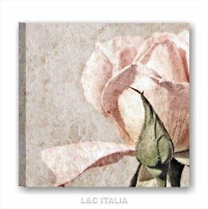 Rose vintage 2 - QUADRO SU TELA 50x50 cm ARREDO SALOTTO CAMERA LETTO ...