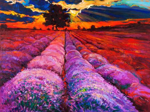 art painting print australian modern abstract olly murrie  60cm x 50cm