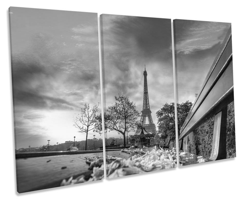 Eiffel Tower Paris Floral B&W CANVAS WALL ART TREBLE Box Frame Print