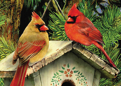 A5 SIZE RED CARDINALS BIRDS PAINTING ACRYLIC PAINT BY NUMBERS KIT PBNMIN-118