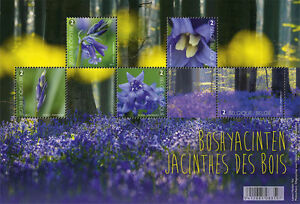 belgium 2017 belgique Forest in bloom flowers blumen flora Jacinthes ms 5v mnh - France - Region: Germany Year of Issue: 2011-Present Type: Miniature Sheet Country/Region of Manufacture: Belgium Topic: Flowers Denomination: Forest in bloom flowers blumen flora Jacinthes Quality: Mint Never Hinged/MNH - France