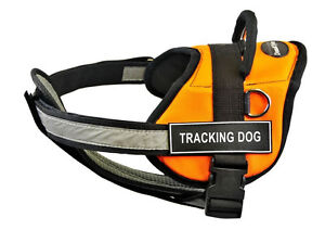 Dean-amp-Tyler-DT-Works-Orange-Dog-Harness-with-Chest-Pad-and-Removable-Patches