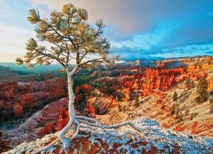 Eurographics Jigsaw Puzzle 1000 Piece - Grand Canyon - Winter Sunrise
