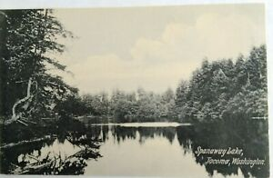 Divided-Back-Era-postcard-Spanaway-Lake-Tacoma-Washington-Printed-in-Germany