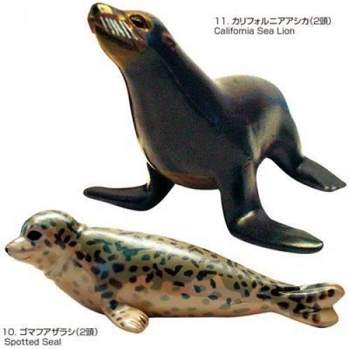 Fellow marine mammals whale dolphin ha0638 COLORATA Japan Real Figure box