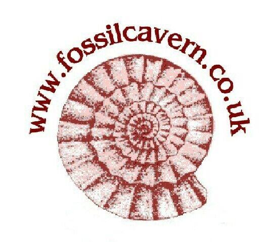 fossilcavern
