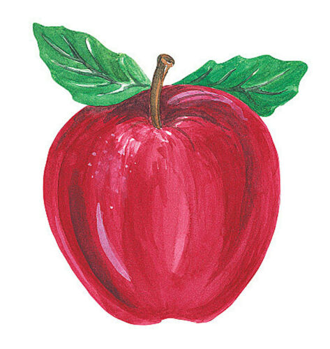Apples 25 Wallies Stickers Red Apple Fruit Border Decal Coutouts to Decorate Any