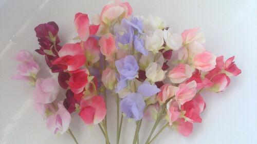 Fleurs De Soie Artificielle mélangées Sweet Pois x 12 Maison Jardin Décor