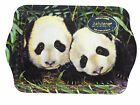 Australian Souvenir Ashdene Australia Artist G. Fleming Scatter Tray Panda Cubs