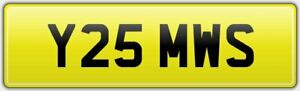 NEAT-OLD-STYLE-PRIVATE-CAR-REG-NUMBER-PLATE-Y25-MWS-ALL-FEES-PAID-MS-MW-MICHAEL